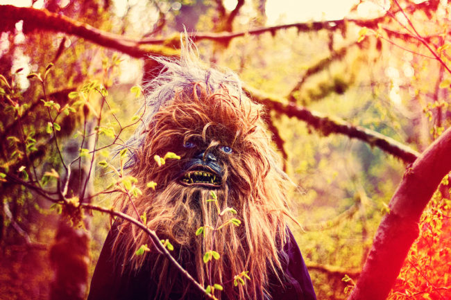 Chewy in the Mist Mako Miyamoto Photography Lifestyle Wookie Star Wars Chewbacca Chewy Bigfoot forest nature