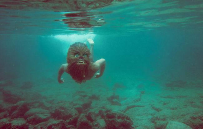 Aquaman Photograph by Mako Miyamoto. Wookie swimming underwater in the ocean of Kona, Hawaii
