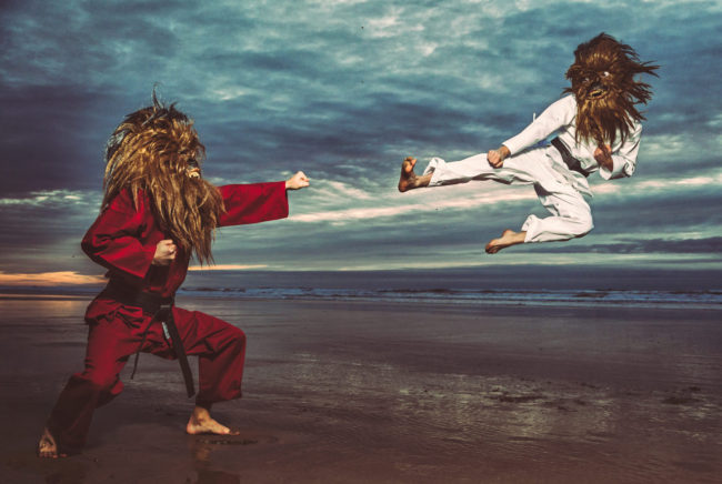 Stop Blocking My Fists with Your Face I Photograph by Mako Miyamoto. Wookie karate / kung fu showdown on the beach at sunset.