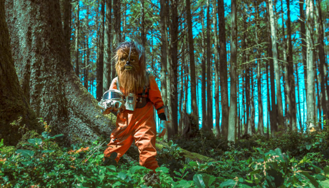The Clearing I Photograph by Mako Miyamoto. Wookie astronaut explorer venturing out into the unknown forest. Created for the series Further West shown at Stephanie Chefas Gallery in Portland, OR